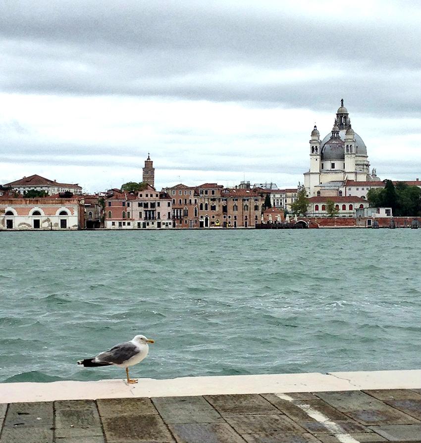 Venice_Guidecca by klovebudapest.com